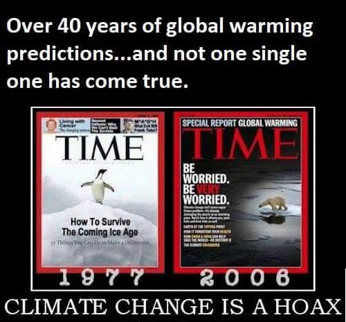 Climate change hoax.jpg