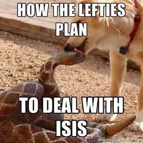 liberals vs ISIS