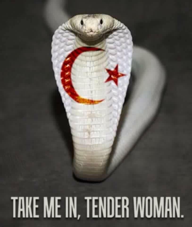 Islam snake.jpg