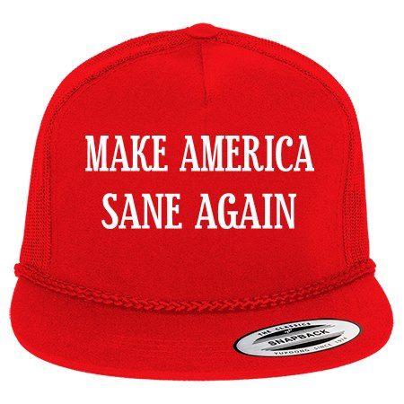 Make America Sane Again.jpg
