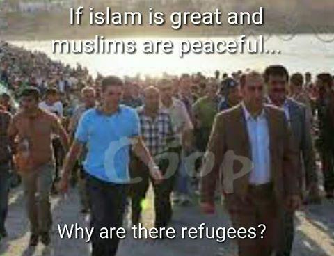 muslim refugee question.jpg