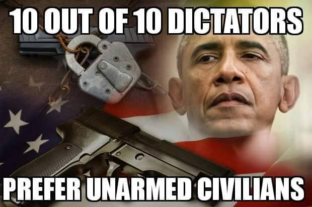 obama gun control 2.jpg