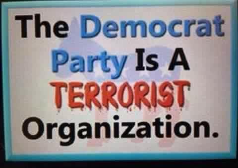 Democrat terrorist.jpg