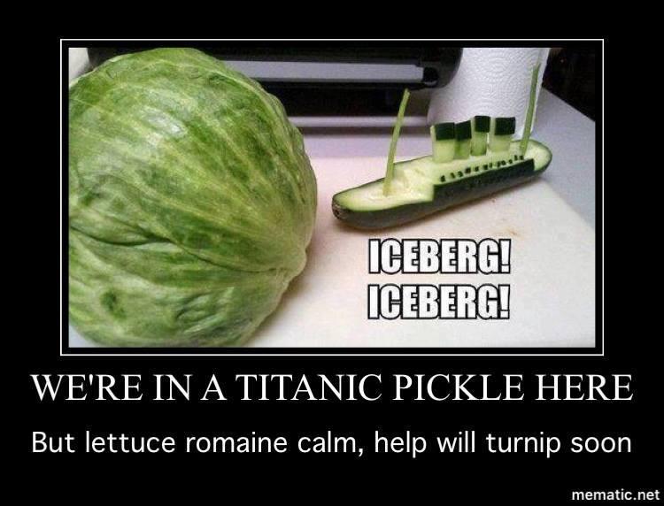 titanic pickle.jpg