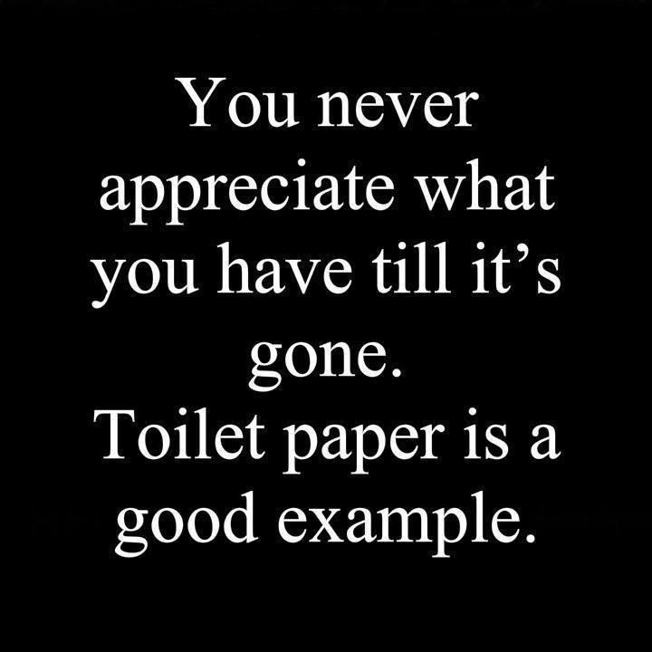 Appreciate What You Have We Never Apprec...