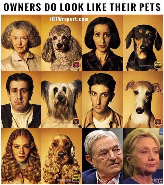 owners do look like their pets.jpg