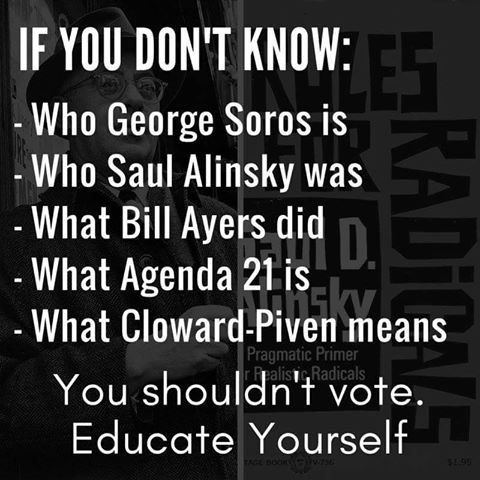 do you know enough to vote intelligently.jpg