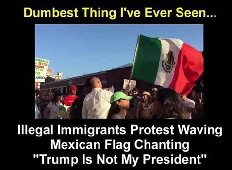 illegals demonstrating.jpg