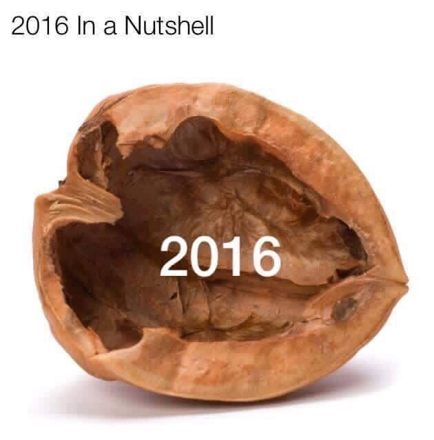 2016 in a nutshell.jpg