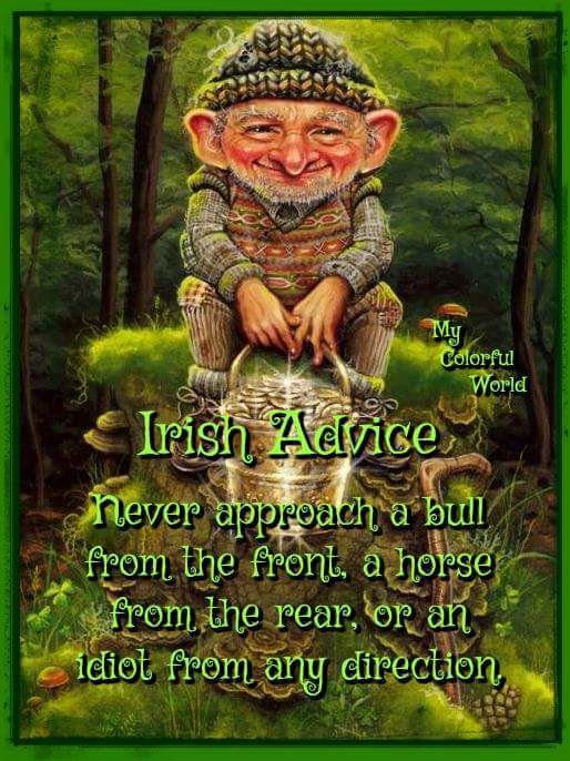 Irish Advice.jpg