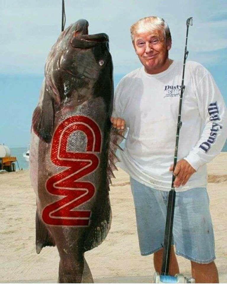 Trump vs CNN.jpg